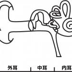 耳が詰まる7つの原因や病気!【この対処法でスッキリしよう!】